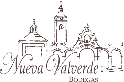 Nueva Valverde Winery: Wine Shop